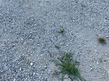 サイトの地面は水はけ重視の砂利サイトになります。