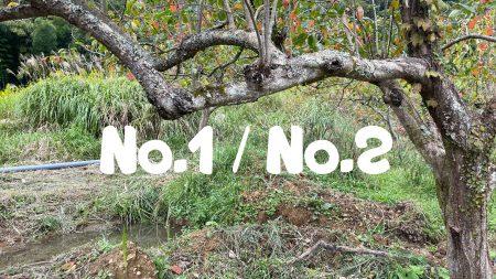 No.1、No.2比較