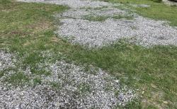 サイトの水はけ改善のため小砂利サイトへ作り替え